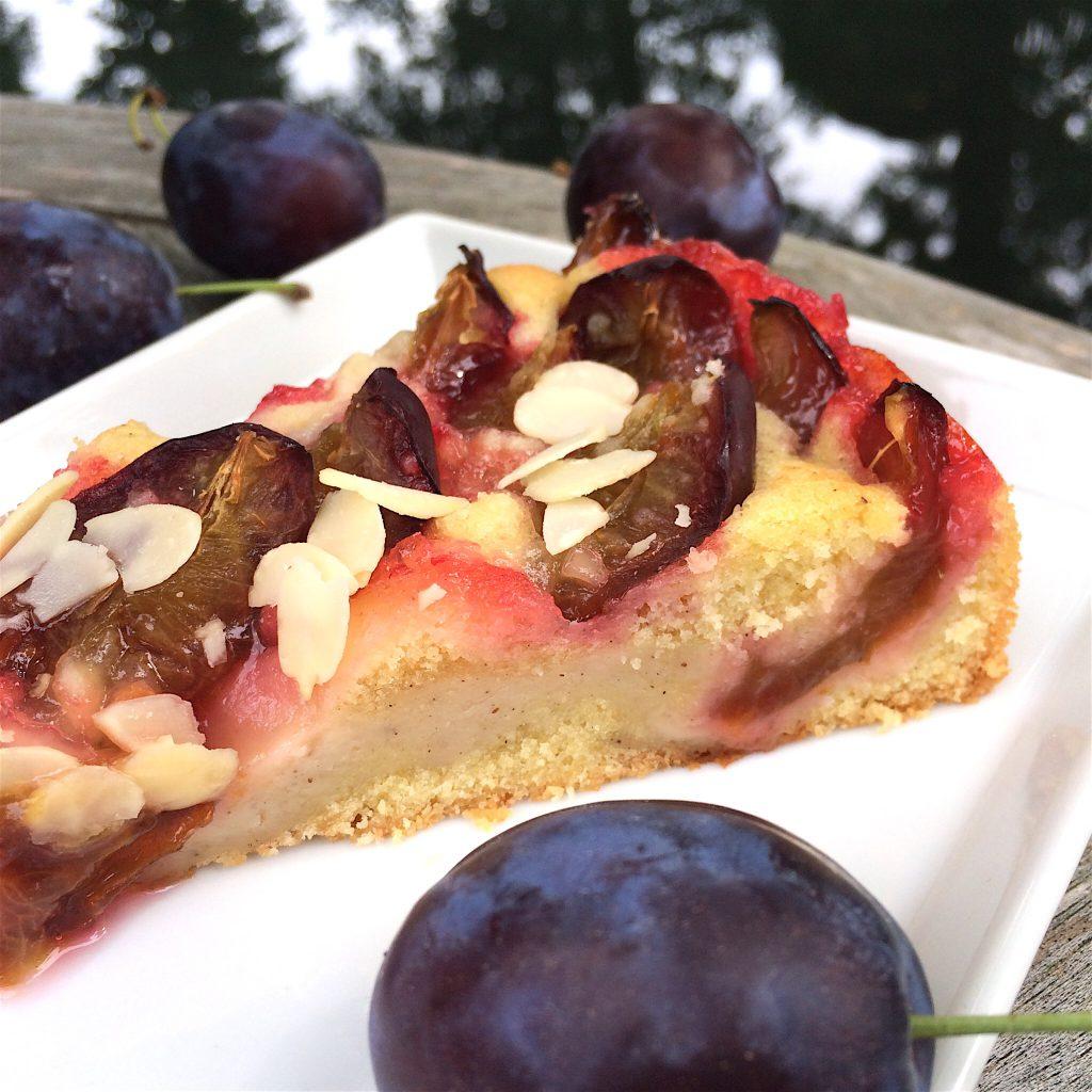 Zwetschgen-Kuchen glutenfrei saftig Pudding