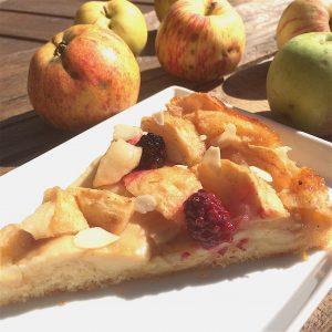 Apfelkuchen glutenfrei rezept
