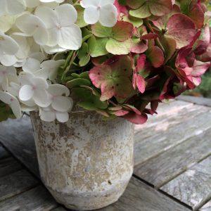 Herbst Deko Vintage Hortensien