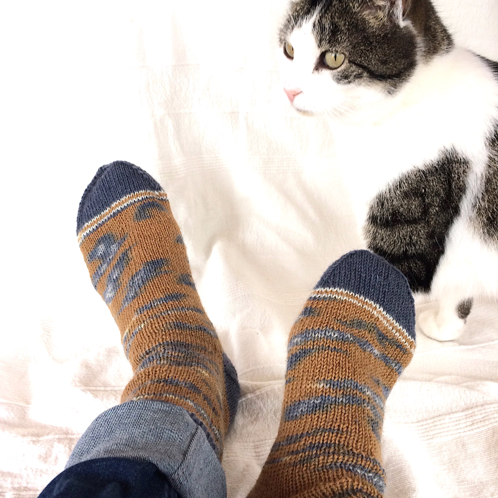 Kinda Magic Sock Yarn